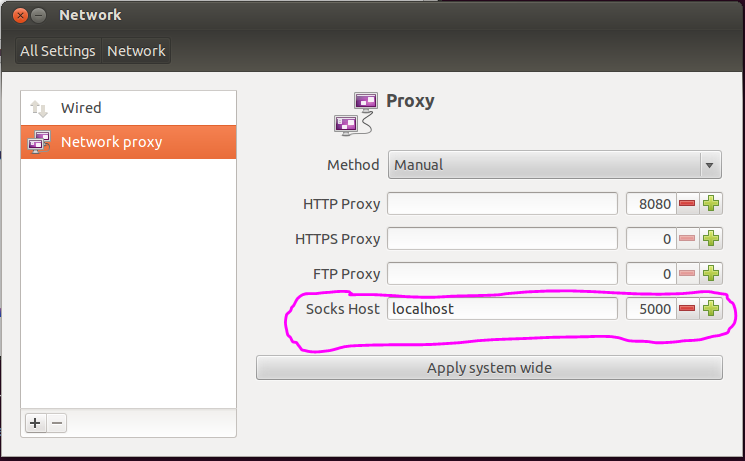 SOCKS proxy network settings